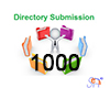 1000 Slow Directory Submission