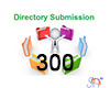 300 Directory Submission