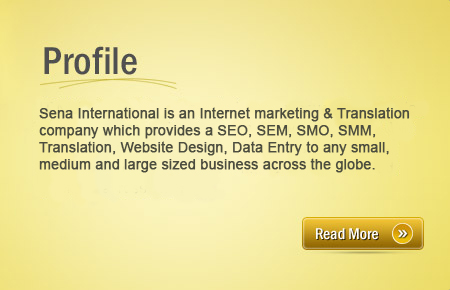 Sena International: SEO |SES |SEM |SMO |SMS |SMM |Translation |Web Design |Data Entry Service